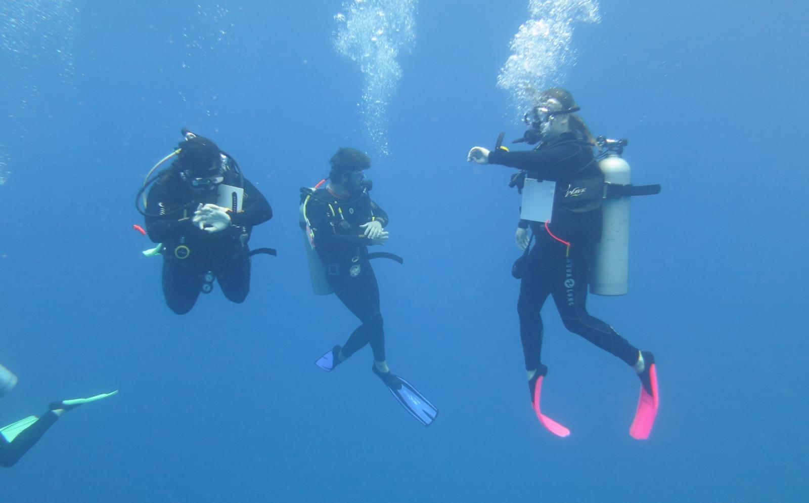 フィジーの海でダイブマスターを目指すボランティアたち